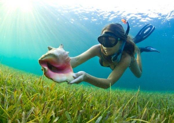 Snorkeling the Belize Barrier Reef #vacation #xoBelize