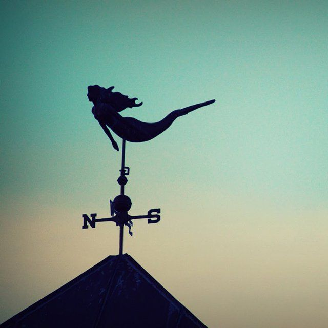 Fancy | Mermaid Weathervane | the elegance of words: day 202 of 365: Light northwesterly winds, according to the mermaidvane.