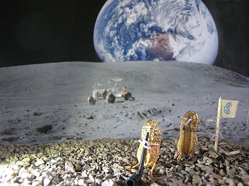 Leo, 11 Jahre, aus Potsdam hat seine Erdnussmännchen auf den Mond geschickt (Foto von: GEOlino)