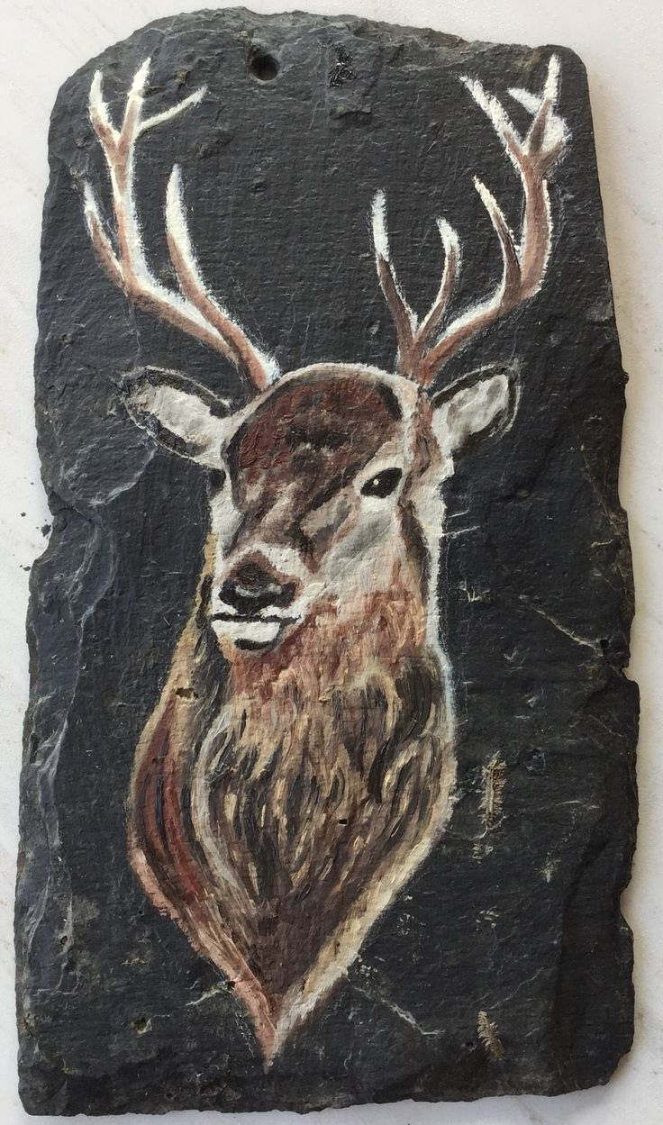Stag - Oil Painting on slate.