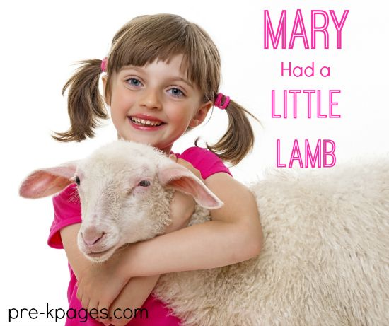 123 Best Images About Mary Had A Little Lamb On Pinterest