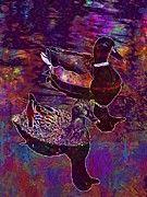 "New artwork for sale! - "" Drake Duck Pond Birds Water  by PixBreak Art "" - http://ift.tt/2eYnlTY"