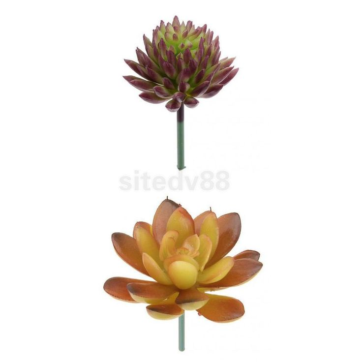 2pcs Artificial Fake Succulent Echeveria Flower Plant Foliage Home Decor