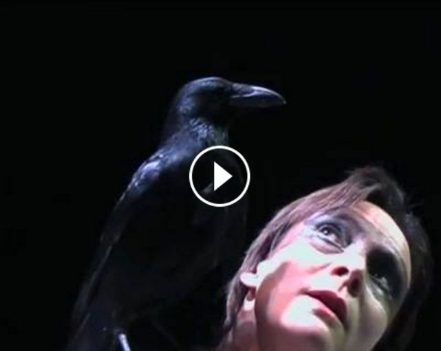 Bayo, the crow. A leading interpreter of Luc Petton's Confidence des Oiseaux, seen here in a duet with the amazing dancer Marie-Laure Agrapart, created in 2005.