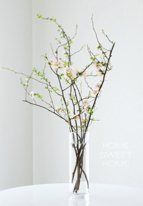 Vases with green blooming branches. I love this, so classy