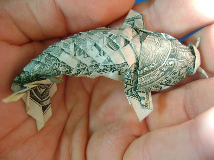 Fish made out of money :)
