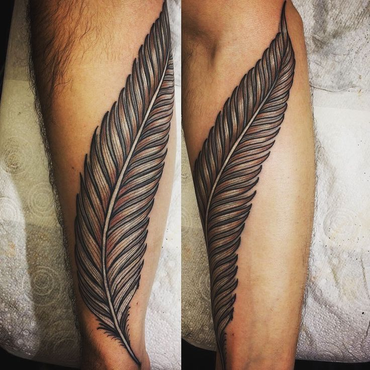27 best tattoo inspiration images on pinterest peacock for Higher ground tattoo