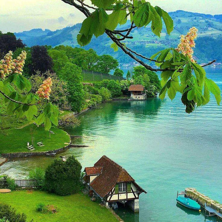 #spiez #swissalps #switzerland #switzerland #europe #Tourism#travel#luxurytravel #worldsmostbeautifulplaces #wonderful#wonderfulplaces #amazing#amazingplaces #beautiful#beautifulplaces #imagination#nature#luxury #photography#amazingshot#snapshot#awesome #travelawesome