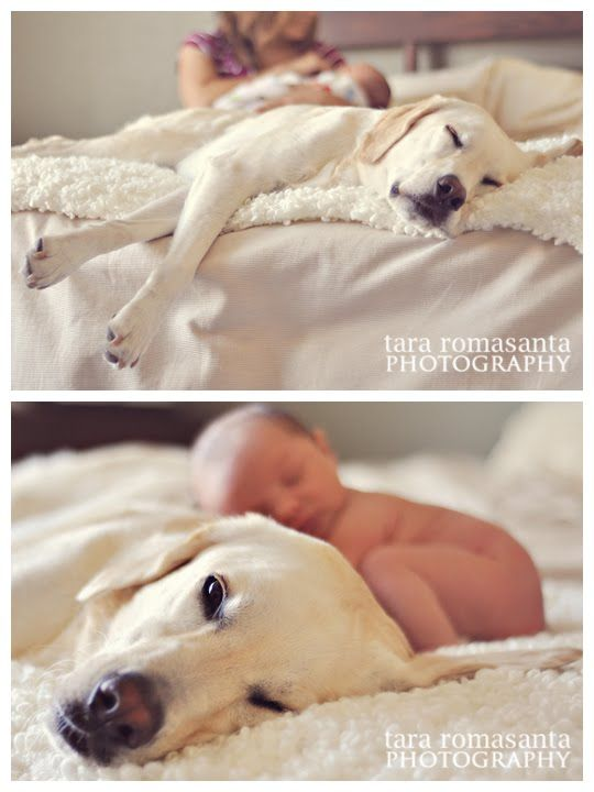 Thank you Kim for sharing this....LOVE this, and these pictures WILL be happening with all of our babies! (Bella, Gunner and little baby Davis)