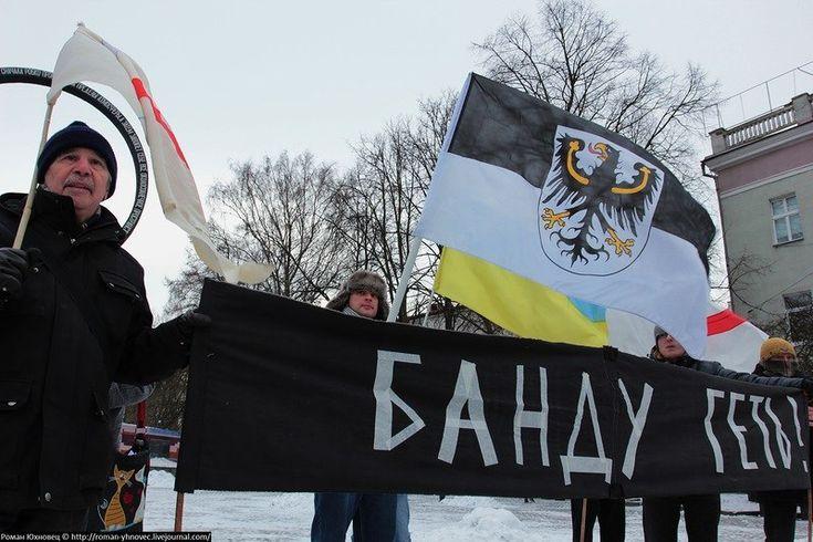 Калининградские активисты повторно арестованы за флаг Германии над местным ФСБ Политика