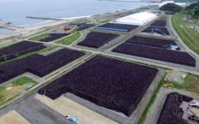Fukushima Nuclear Disaster Update:  Bags of nuclear waste sits on top of the ground, in piles. The cleanup effort could take decades; meanwhile the amount of radioactive material the plant leaks grows