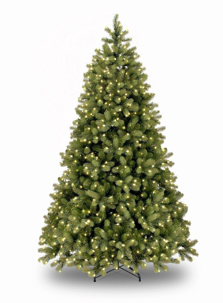 5.5ft Pre-lit Bayberry Spruce Fir Feel-Real Artificial Christmas Tree