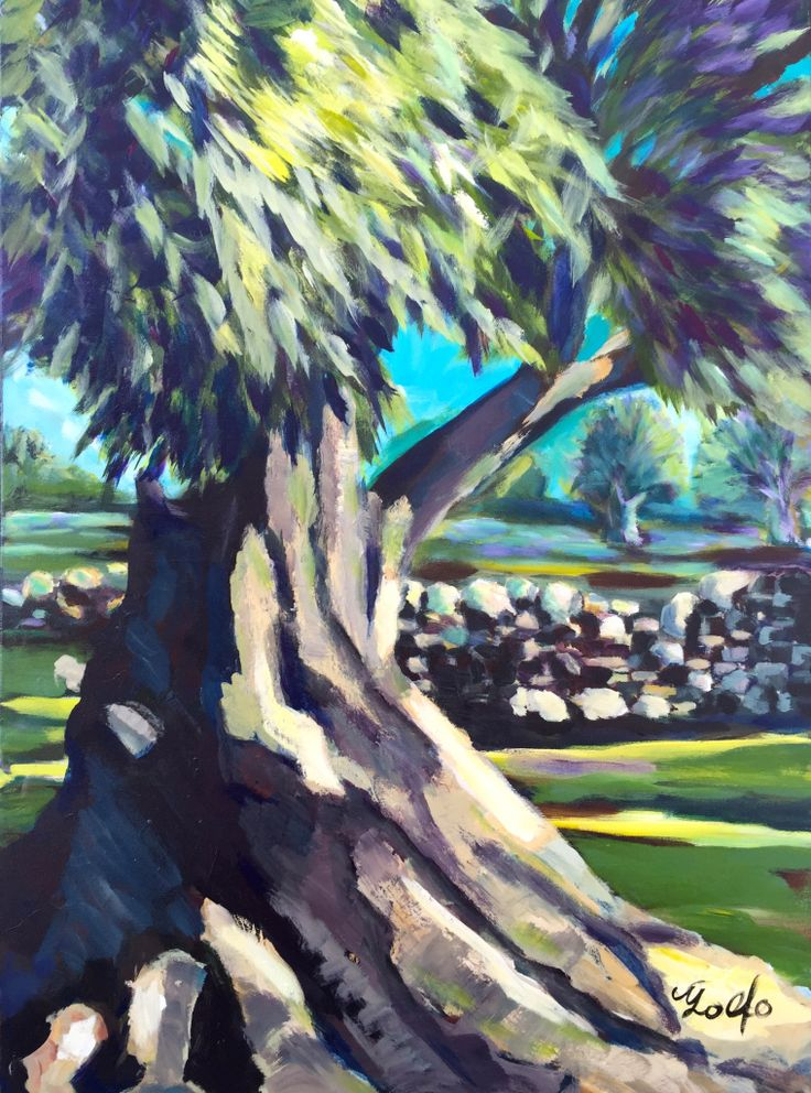 Donated to the Hellenic Hope, Toronto, Canada: The Ancient Olive Tree