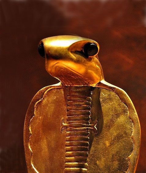 Cobra artifact in King's Tutankhamun's tomb. Our property STOLEN by the Egyptian Government since 1922