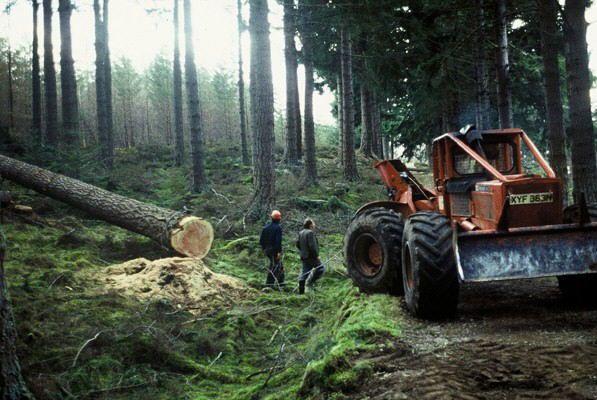 long wallet chain logging skidders   1989