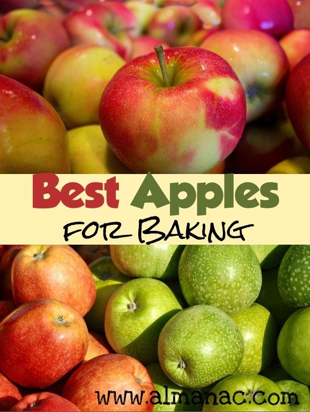 Best Apples for Baking from The Old Farmer's Almanac