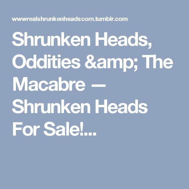 Shrunken Heads, Oddities & The Macabre — Shrunken Heads For Sale!...