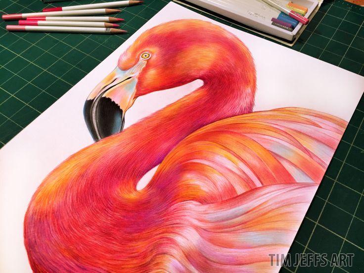 Flamingo illustration by @timjeffsart using @tombowusa Irojiten Colored Pencils