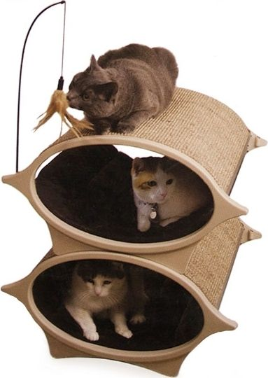 Cat Furniture Profile: PURRsona Cat Eye Bed - Cat | Pet Care Corner by PetSolutions - PetSolutions Blog