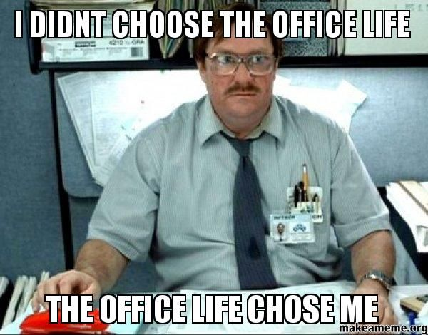 Image result for office memes