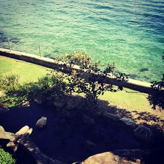 McKell Park, Darling Point | 18 Magical Places You Won't Believe Are Actually In Sydney