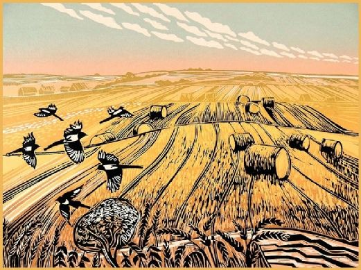 """""""Magpies in a Summer Field"""" Linocut by Rob Barnes…"""