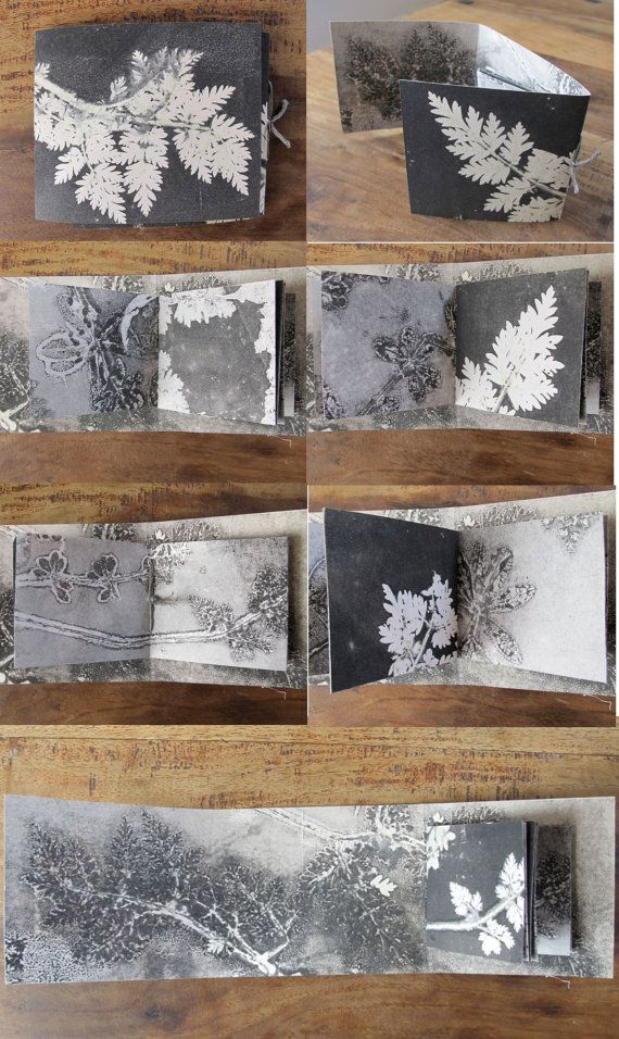 Original botanical art monoprint artist book by fieldandhedgerow