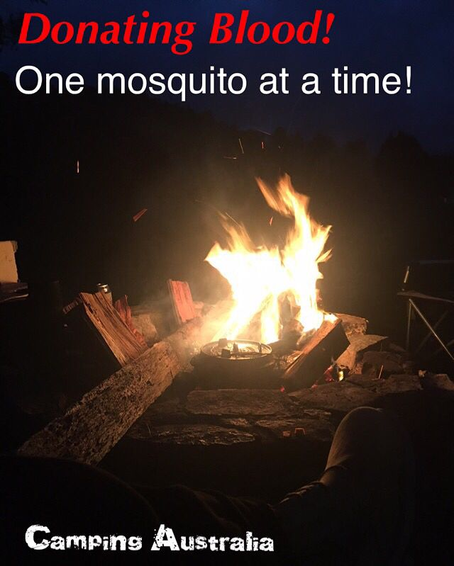 Camping Australia you need a good fire to keep those bloody mosquitos away. Other wise your donating blood one mosquito at a time.