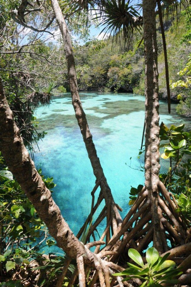 Paradisiaque Nouvelle-Calédonie - LeVifWeekend.be