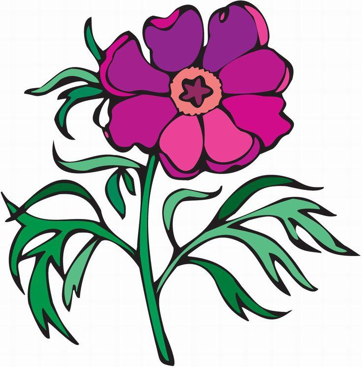 Cartoon carnation flower photos
