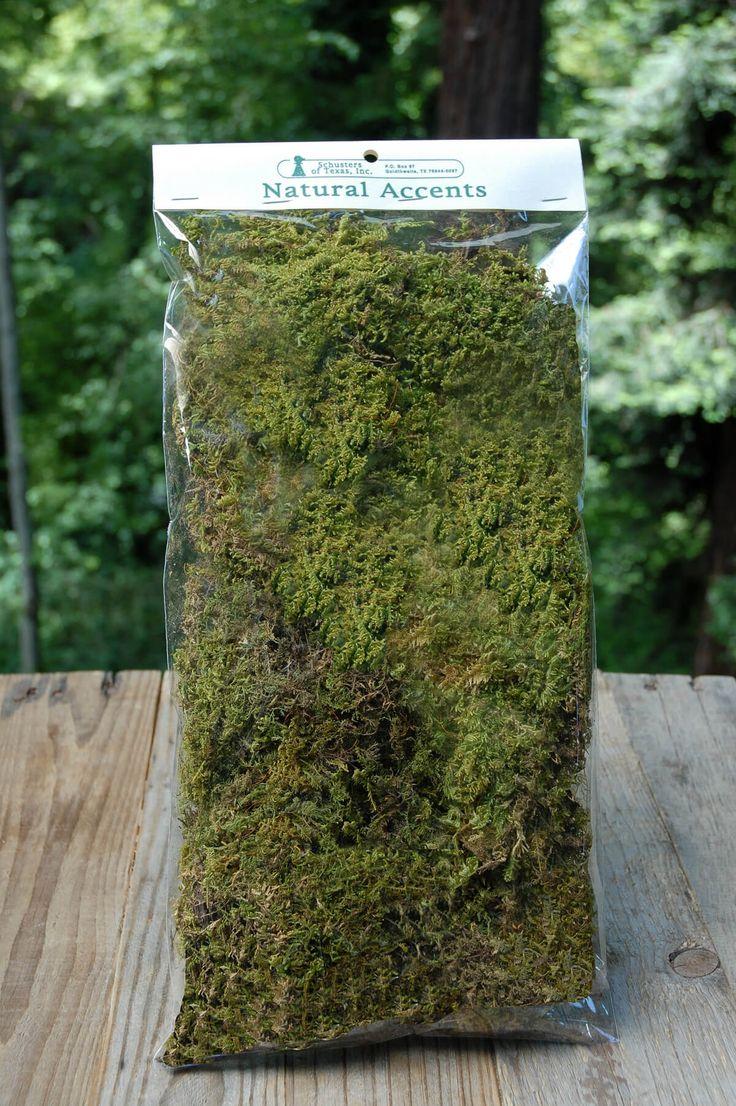 Natural Sheet Moss 2oz Bag 24 best