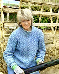 Starting a Strawberry Patch - Martha Stewart Home & Garden