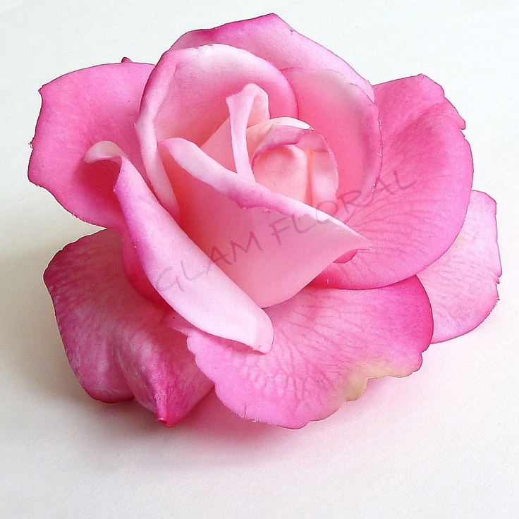 White Garden Rose Hair 63 best real touch rose hairclips images on pinterest | rose hair