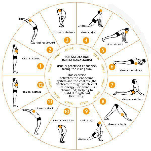 Benefits of Sun Salutation (Surya Namaskaar) yoga vedas ancient india vedic yoga benefit of yoga