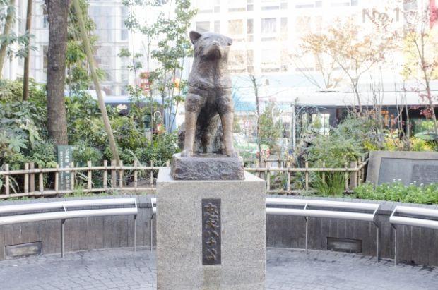 韓国人「日本の渋谷駅の象徴、忠犬ハチ公について調べてみよう」
