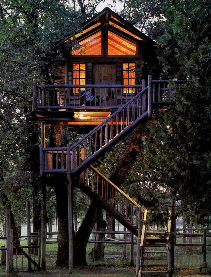 16 Best Future Tree House Images On Pinterest Treehouses Places