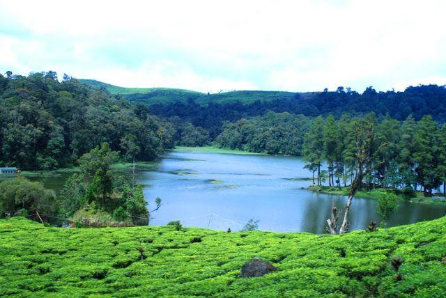 Wisata Danau Cinta Situ Patenggang di Ciwidey Bandung