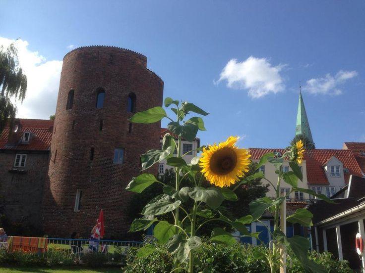 Altstadtbad Krähenteich Lübeck - Anlage
