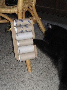 Das Wandfummelbrett am Kratzbaum - Katzenspiele