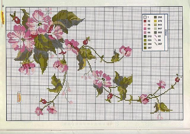 fiori rampicanti rosa