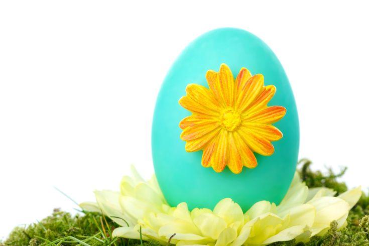 Egg, Color, Celebration, Decoration, Easter, Event, Festive, Flower, Photography