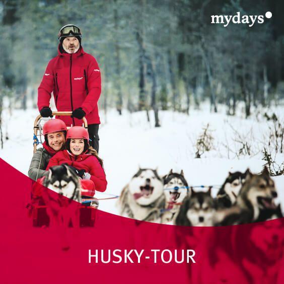 Husky Tour   Überrasche Deinen Schatz Zum Valentinstag Mit Dem Highlight  Aus Unserem Neuen TV