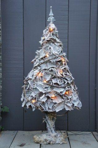 Winterboom   Licrea yzergoed