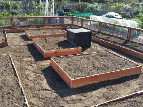 Garden Plot fence and raised beds