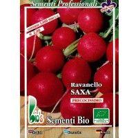 Rabanito Redondo Saxa 250 Gr - Semillas Ecológicas