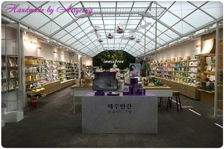 주문제작 DISPLAY 이니스프리 인리치드크림 제주한란 #3 Jeju Han-ran (Cold-growing cymbidium)  of Art Flower (Requested by innisfree Cosmetics) http://blog.naver.com/koreapaperart               #조화공예 #종이꽃 #페이퍼플라워 #한지꽃 #아트플라워 #조화 #조화인테리어 #인테리어조화 #인테리어소품 #에바폼 #디퓨져 #주문제작 #수강문의 #광고소품 #촬영소품 #디스플레이 #artflower #koreanpaperart #hanjiflower #paperflowers #craft #paperart #handmade #제주한란 #이니스프리