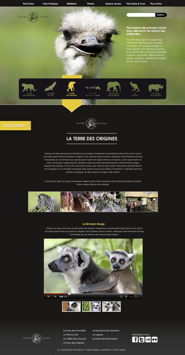 Zoo website concept. | #webdesign #it #web #design #layout #userinterface #website #webdesign < repinned by www.BlickeDeeler.de | Visit our website www.blickedeeler.de/leistungen/webdesign