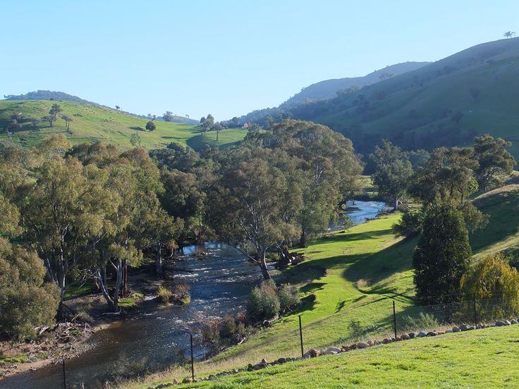 Elm cottage river view