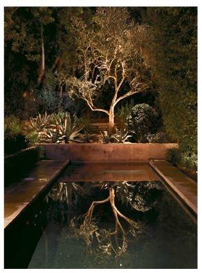 Reflecting pool -  stunning small modern pool design