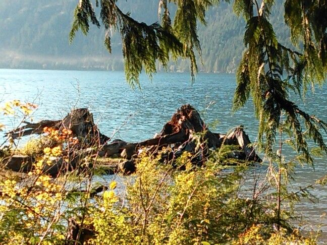 Lake cushman my absolute favorite place in the world